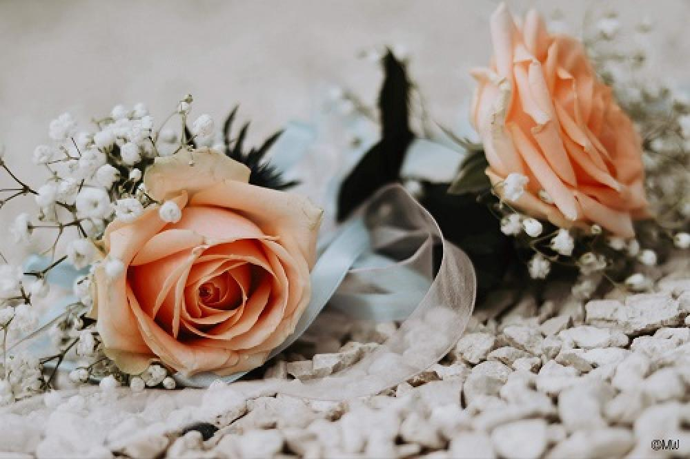 so-tiges-mariage-19