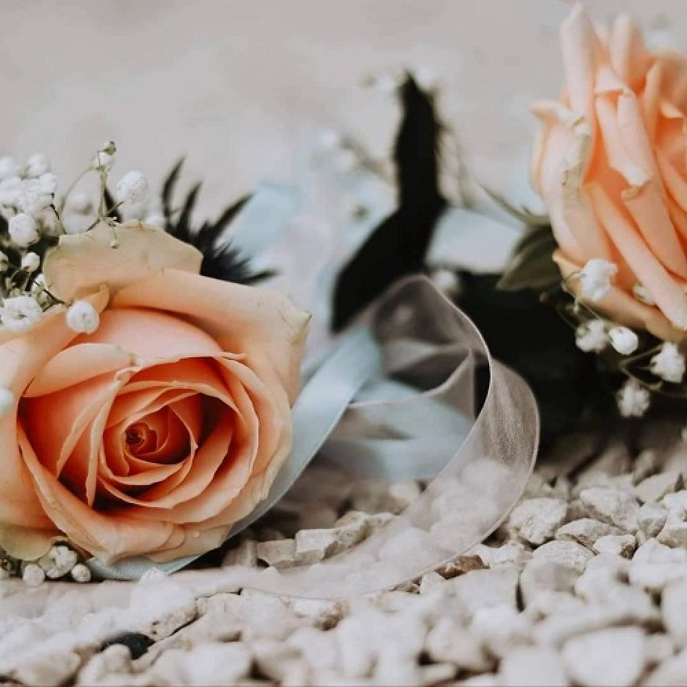 so-tiges-mariage-29